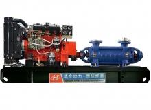 42kw扬动水泵机组